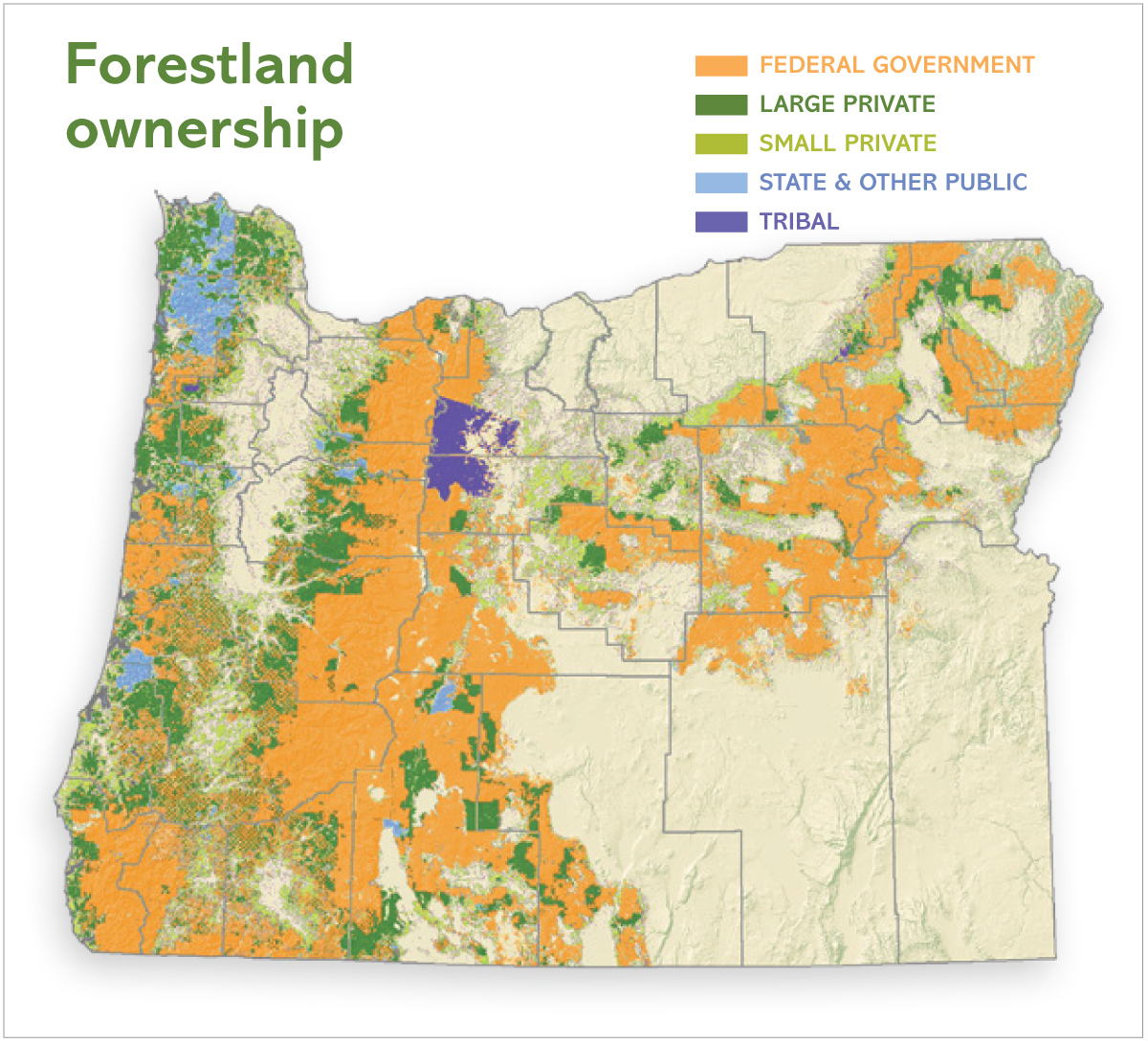 Forestland ownership